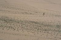 ピラ砂丘を走る人物のシルエット 空撮 アキテーヌ 02265012547| 写真素材・ストックフォト・画像・イラスト素材|アマナイメージズ