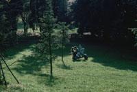森林風景とバイクに乗るカップル イタリア