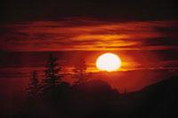 太陽と雲と木のシルエット(オレンジ色) 02265015195| 写真素材・ストックフォト・画像・イラスト素材|アマナイメージズ