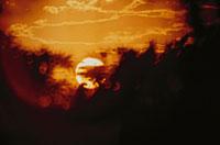 夕暮れの太陽のシルエット(オレンジ色) 02265015203| 写真素材・ストックフォト・画像・イラスト素材|アマナイメージズ