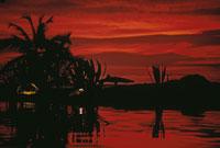水面に映る木のシルエット 02265015278| 写真素材・ストックフォト・画像・イラスト素材|アマナイメージズ