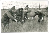 兵士によって片付けられるオーストリア・ハンガリー国境の鉄条網 02265016671| 写真素材・ストックフォト・画像・イラスト素材|アマナイメージズ