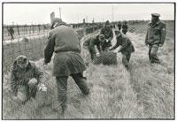 兵士によって片付けられるオーストリア・ハンガリー国境の鉄条網 02265016677| 写真素材・ストックフォト・画像・イラスト素材|アマナイメージズ