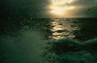 北海のトロール漁