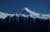 雪山と樹木 クック国立公園 ニュージーランド 02265020804| 写真素材・ストックフォト・画像・イラスト素材|アマナイメージズ