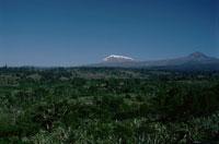 雪をかぶった山と高地 キリマンジャロ 02265020881| 写真素材・ストックフォト・画像・イラスト素材|アマナイメージズ