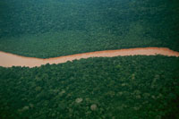 コンゴ国境のザイール川と森林 02265021110| 写真素材・ストックフォト・画像・イラスト素材|アマナイメージズ