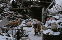 積雪の新年の地震災害地で犬をなでる女性 レニナカン市