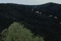 エトナ山の噴火の焼け跡 シシリー島 イタリア