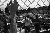 フェンス越しのテニス競技大会 モンテカルロ モナコ