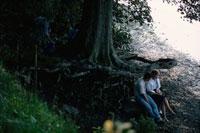 大樹の下のカップル イギリス