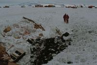 南極のゴミ