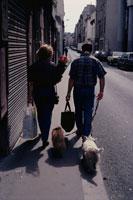 花を持った女性と犬を2匹連れた男性 02265036792  写真素材・ストックフォト・画像・イラスト素材 アマナイメージズ