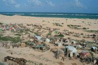 海岸沿いの難民キャンプ、ソマリア