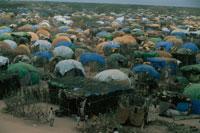 ソマリアからの難民キャンプ、ケニア