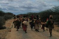 食料を探して別のキャンプへ向かうソマリア難民
