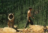 戦場に設置されたトイレと兵士 ベトナム戦争 1971年