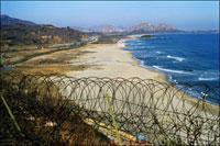 有刺鉄線越しに北朝鮮側を望む