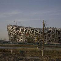 北京国家体育場 02265038114| 写真素材・ストックフォト・画像・イラスト素材|アマナイメージズ