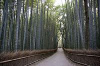 竹林の中の道と人物点景
