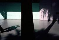 路面に映ったカップルと木の影 02265038359| 写真素材・ストックフォト・画像・イラスト素材|アマナイメージズ