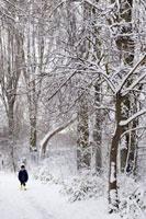 雪が積もった森の中にたつ子供