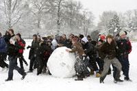 大勢で雪だるまを作る