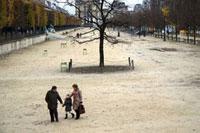 公園の広場を歩く家族