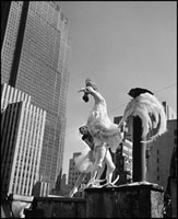 USA. New York City. 1941.