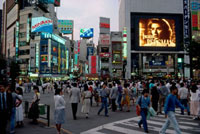 JAPAN. Tokyo. The Shinjuku 'entertainment' district
