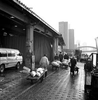 JAPAN. Tokyo fish market. 1997.