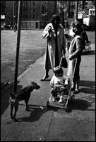 乳母車の子供と犬