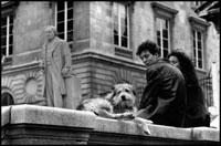 カップルと犬 02265039707| 写真素材・ストックフォト・画像・イラスト素材|アマナイメージズ