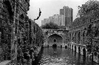 川に飛び込む少年 02265039831| 写真素材・ストックフォト・画像・イラスト素材|アマナイメージズ