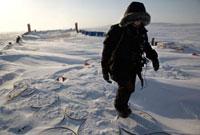 北極調査隊
