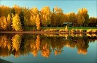 川に反射する紅葉の木々