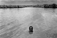 川の水面から顔を出す少年