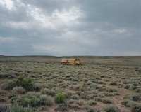 荒野の黄色いバスと馬