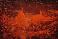 落ち葉 02265040783| 写真素材・ストックフォト・画像・イラスト素材|アマナイメージズ