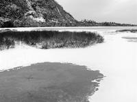 雪に覆われた平原