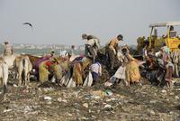 ゴミ廃棄場でゴミを漁る人々