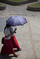 日傘をさし歩く二人の女性