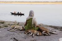 川を眺める人と3匹の犬
