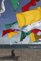 海岸にはためく旗