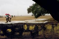 嵐でずぶ濡れになる人々