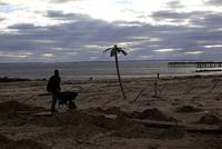 海岸で砂を運ぶ男性