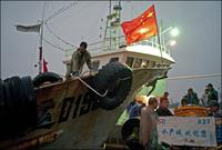 夜明け、港に戻り荷を降ろす漁船