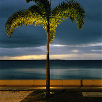 AUSTRALIA. UNESCO World Heritage Sites. The Great Barrier Reef. The esplanade at Cairns. 2004.
