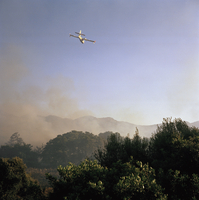 FRANCE. Corsica. Family summer holiday near Calvi. Fire in the Maquis, started by Autonomists, on the outskirts of Calvi, are co