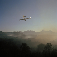 FRANCE. Corsica. Family summer holiday near Calvi. A forest fire fighting plane. 2005.